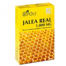 Bipole Jalea Real 1000 mg. con fructosa Intersa 20 ampollas -