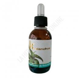 OFERTA Extracto de Kalanchoe Lumen 50 ml. - El Extracto de Alpiste Lumen contiene una alta concentración de principios activos por su elaboración a partir semilla de Phalaris Canariesnsis en base de glicerina.