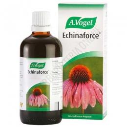 Echinaforce gotas A. Vogel 100 ml. - Echinaforce gotas de A. Vogel es un extracto que contiene echinacea purpurea (planta y raíz) de planta fresca de cultivo biológico certificado.